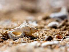 песочница, страница, камни