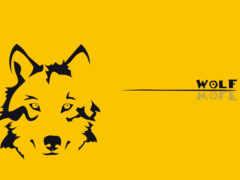 минимализм, волк, yellow
