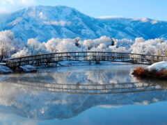 winter, деревня, funart