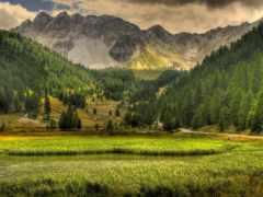 горы, лес, landscape