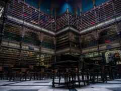 библиотека, красивый, brazilian