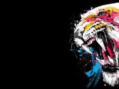 тигр, оскал, klyk