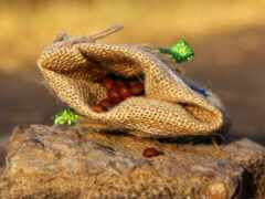 snake, serial, season