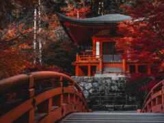 храм, япония, kyoto