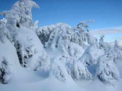winter, time, собой