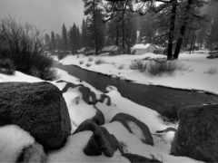 iarna, pic