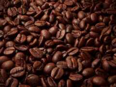 coffee, зерна, seed