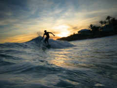 surfing, sports, wave