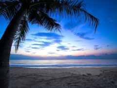 del, мар, playa