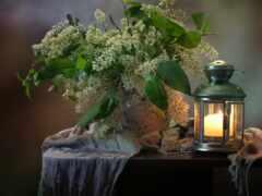 лампа, cheremuh, столик