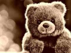 плюшевый, медведь, мишка