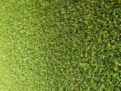 ipad, трава, стадион