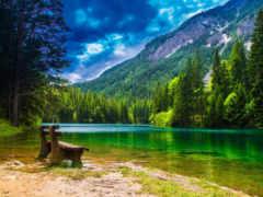 journey, австрии, большое