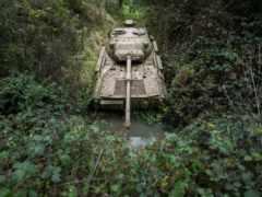 танк в природе
