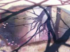 сантиметров, секунду, anime