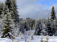winter, природа, снег Фон № 147823 разрешение 4200x2363
