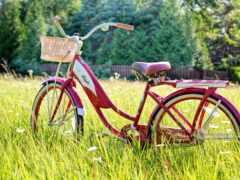 велосипед, mordoviya, summer