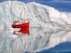 arctic, denmark, тематика