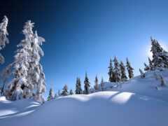 landscape, winter, chalet