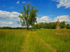 храмы, трава, природа