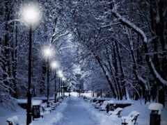 ночь, фонарик, winter