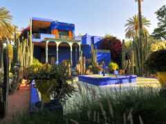 majorelle, jardin, marrakesh