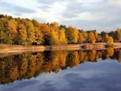 jezioro, озеро, turawa