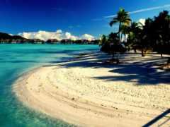 райское, пальмы, пляж