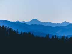 лес, гора, pic
