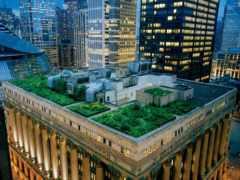сад, крыша