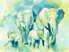 слон, watercolor, baby
