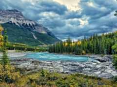 горы, лес, река