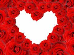 роза, сердце, женя