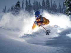 спорт, ski