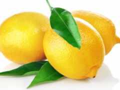 lemon, кейт, gen