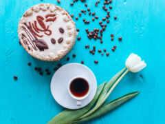 тюльпан, coffee, торт