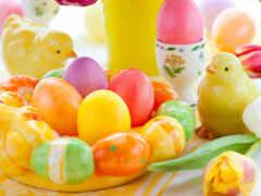 яйцо, пасхальный, курица