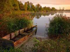 лодка, pic, природа