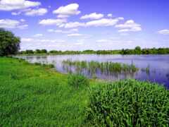 природа, природы Фон № 135171 разрешение 1920x1200