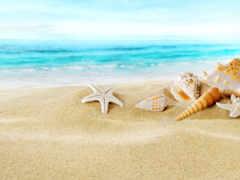 пляж, club, песок