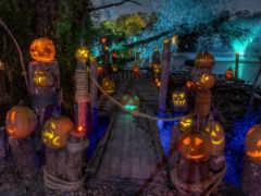 halloween, тыква, art Фон № 155711 разрешение 1920x1200