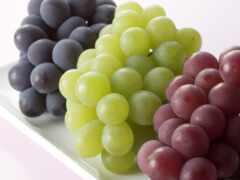 виноград, meal, плод