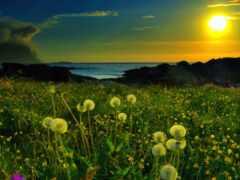 природа, весна, стихи