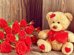 розы, плюшевый, мишка