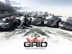 autosport, сетка, game