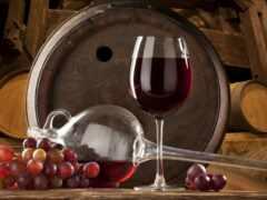 вино, вина, бок