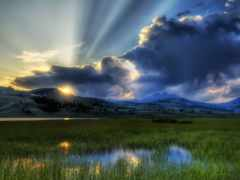 рассвет, природа, rays