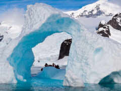 интересно, fact, антарктида