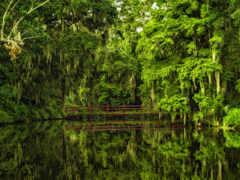 озеро, природа, красивые
