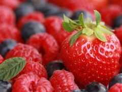atlant, ягода, фото